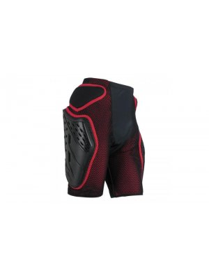 Протекторни Шорти ALPINESTARS BIONIC FREERIDE SHORTS